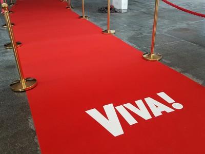 Церемония награждения премией «VIVA!»